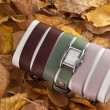 Stock Photo: Watch on autumn leaves