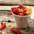 Stock Photo: Red currant