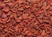 Dried goji — Stock Photo
