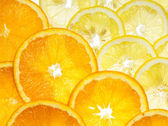 Lemon and orange — Stock Photo
