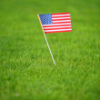 American flag on grass — Stock Photo #1273555