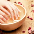Spa for hands — Stock Photo #16318469