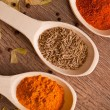 Closeup spices on spoon — Stock Photo #25117765