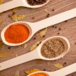 Royalty-Free Stock Photo: Spices in the spooins