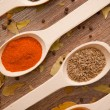 Spices - pepper, curry, chilli, caraway - Stock Photo