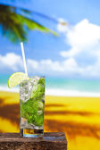 Fresh mojito drink — Stock fotografie