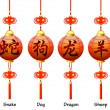 Chinese symbols on the lantern. Signs of the Zodiac. Dog, dragon, snake, sheep. — ベクター素材ストック