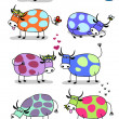 Funny cows set — Stock Vector