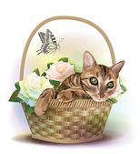 Illustration of the tabby cat sitting in a basket with roses. — Stock Vector