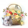 Illustration of the fluffy kitten and basket with roses — Stock Vector