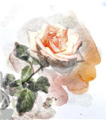 Watercolor image of a rose — Vettoriale Stock