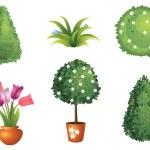 Set of garden plants — Stock Vector