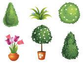 Conjunto de plantas de jardín — Vector de stock