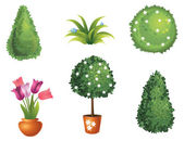 Set of garden plants — Vector de stock