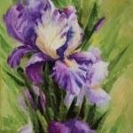 Iris flowers. Vector — Stock Photo