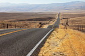 Perfectly smooth highway and desert — Stock Photo