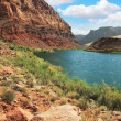 Stock Photo: Pure emerald Colorado River