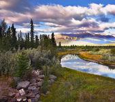 Prachtige ochtend in de reserve in canada — Stockfoto