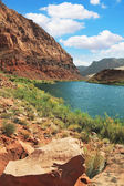 Pure emerald Colorado River — Stock Photo
