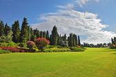 The romantic landscape park - garden — 图库照片