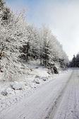 Zonne-winterochtend — Stockfoto
