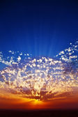 Solemn grandiose sunset on coast — Stock Photo