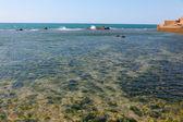 Mar mediterrâneo, a antiga cidade de akko — Foto Stock
