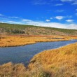 The yellow grass and a stream in Yellowstone national park - Foto Stock