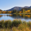 Stock Photo: Beautiful the North lake in California