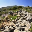 Hills of Galilee — Stock Photo #18305133
