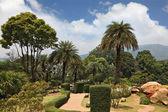 Un magnifique parc en thaïlande — Photo
