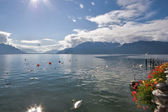 Fine lake Leman — Stock Photo