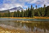 Mountain reserve. — Stock Photo