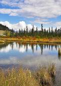 Brilliant small lake — Stock Photo