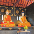 Two statues of the Buddha under a canopy — Stock Photo #19646619