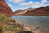 The Colorado River among the steep mountains — Stock Photo