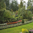 Picturesque  glade in well-known Butchard-garden — Stock Photo