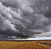 Thunderstorm above fields — Stock Photo