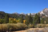 Rocky mountain tops — Stock Photo