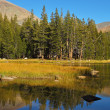 Mountains and a wood are reflected inl lake. — Stock Photo #23303262