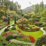 The Sunken-garden on island Vancouver — Stock Photo #23564181