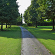 Comfortable path through the lawn — Stock Photo