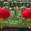 Stock Photo: The traditional red lanterns