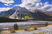 Gölet — Stok fotoğraf