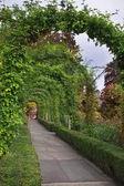 Romantic avenue. — Stock Photo