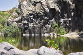 The mountain stream — Stock Photo