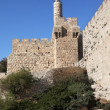 Stock Photo: Eternal Jerusalem, surrounded by walls