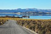 The road to the Mono Lake — Stock Photo