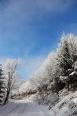Rolde weg in de sneeuw — Stockfoto