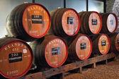 Classic huge oak barrels of wine Madera — Stock Photo